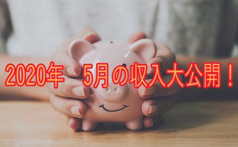 5月の収入の画像